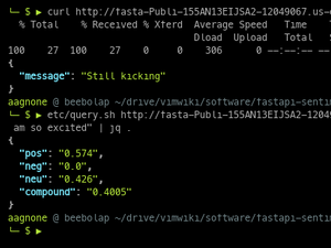 FastAPI Sentiment Analysis API On ECS